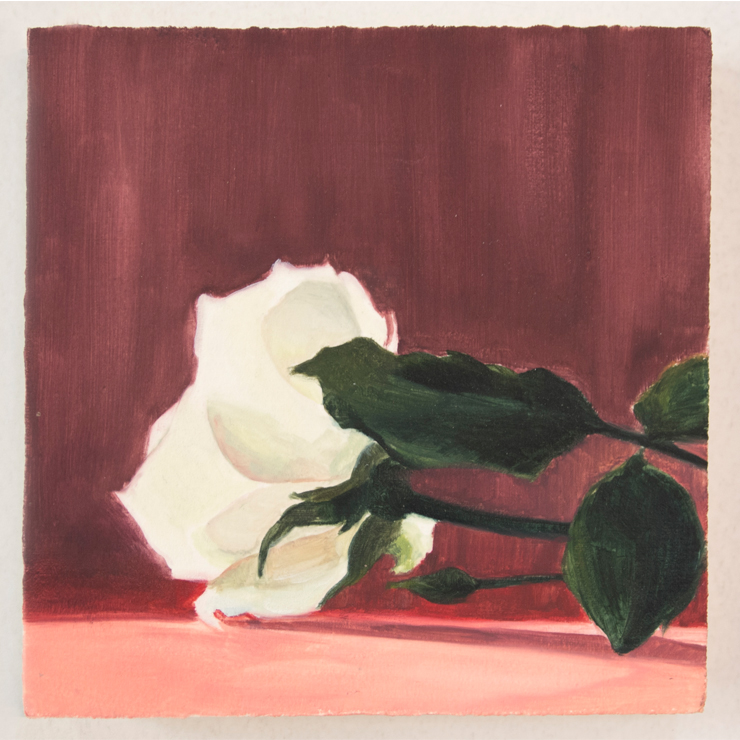 kurz_untitled_rose